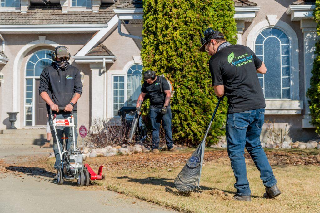 spring lawn care edmonton