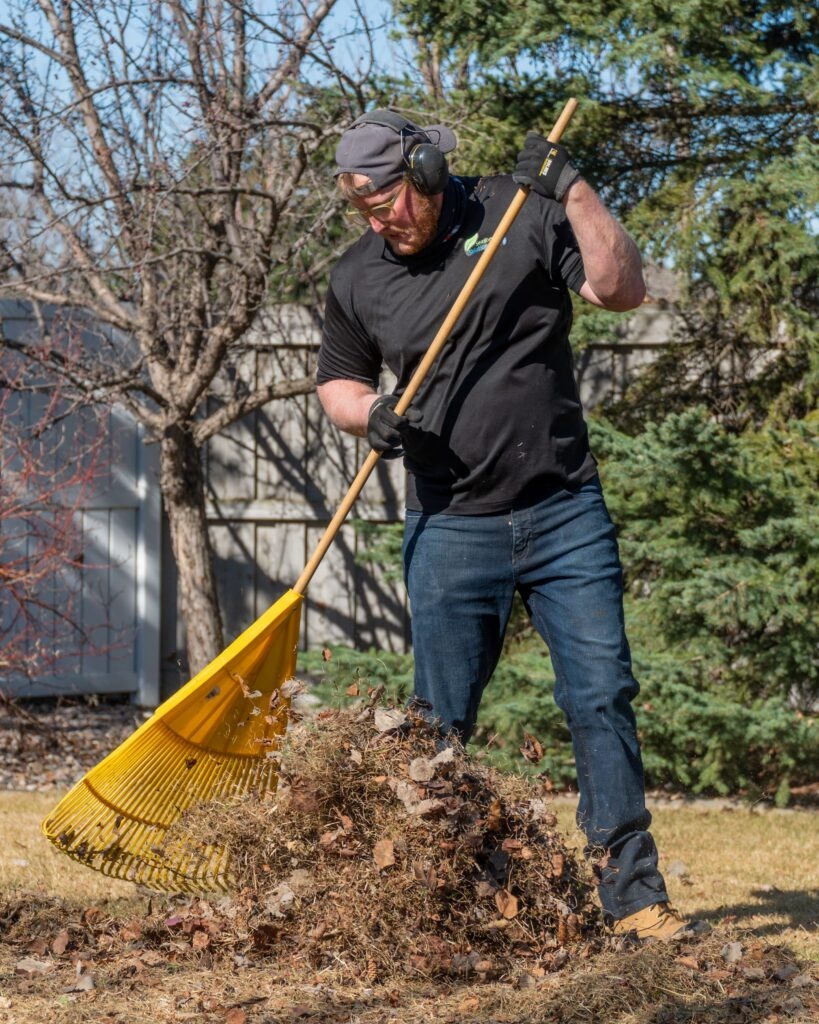spring clean up sherwood park